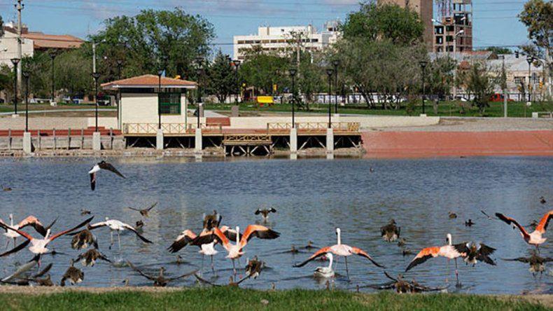 Advierten y concientizan sobre bacterias tóxicas en la Laguna Chiquichano