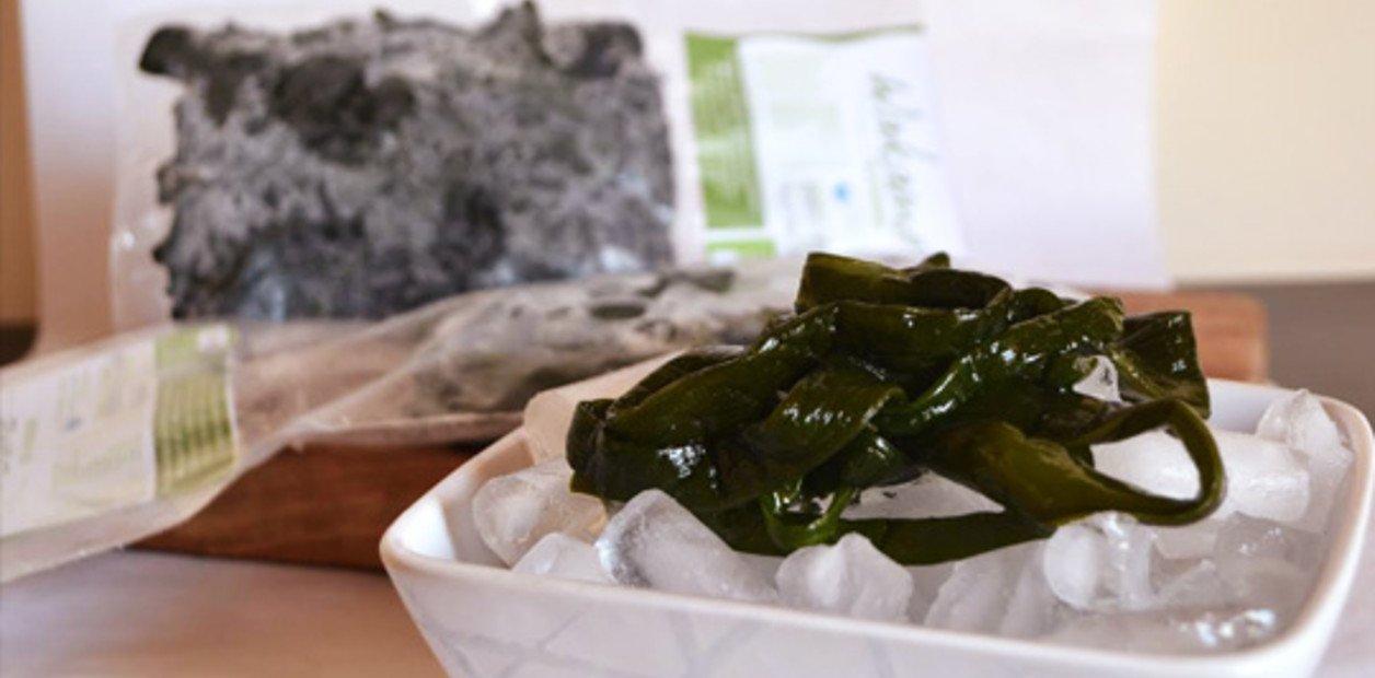 Procesamiento de algas: Cooperativa de Camarones logró la Certificación Orgánica de Algas
