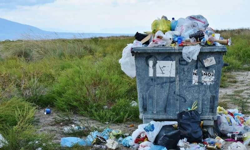 Agenda inminente: Los numerosos desafíos ambientales pendientes en 2021