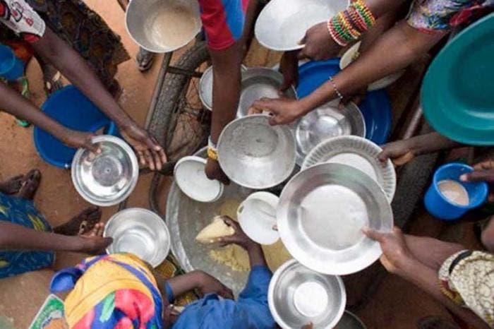 Hambre y ciencia: Científicos chubutenses presentaron proyectos para combatir necesidades en Argentina
