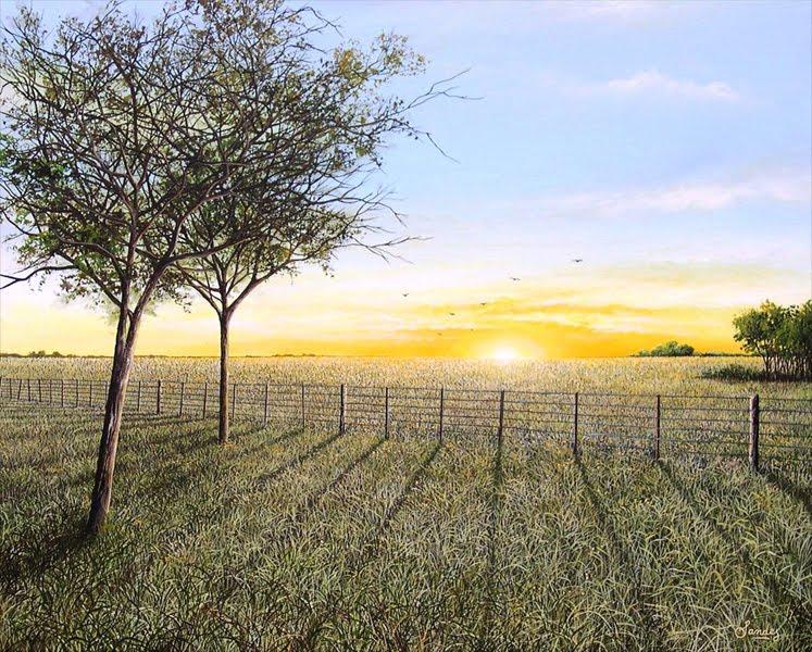 Agro: Un campo rinde más si se destina el 20% de su superficie a la vida silvestre