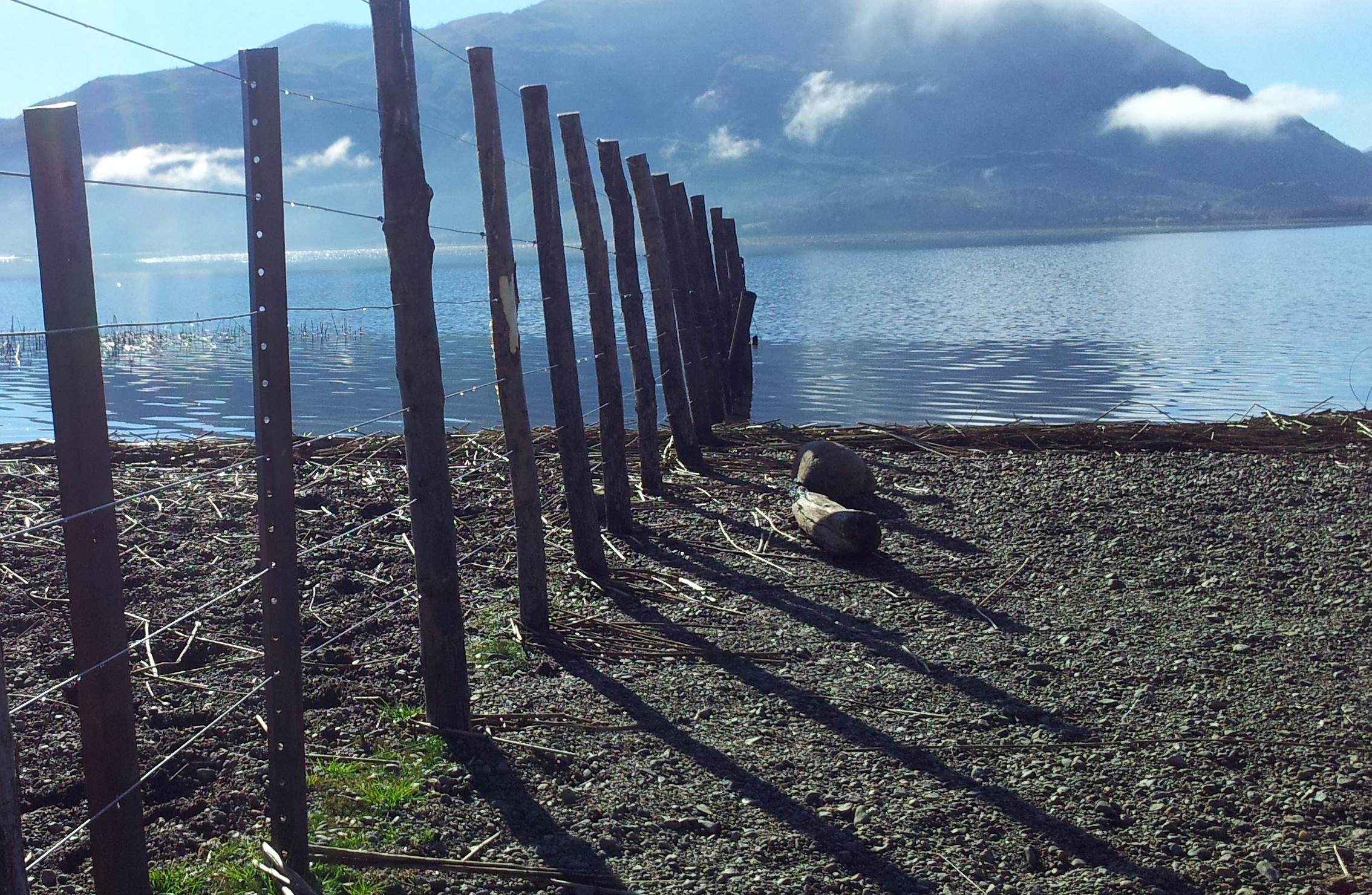 Piden a las provincias cumplir la Ley Nacional de Catastro y que los lagos sean «de dominio público»