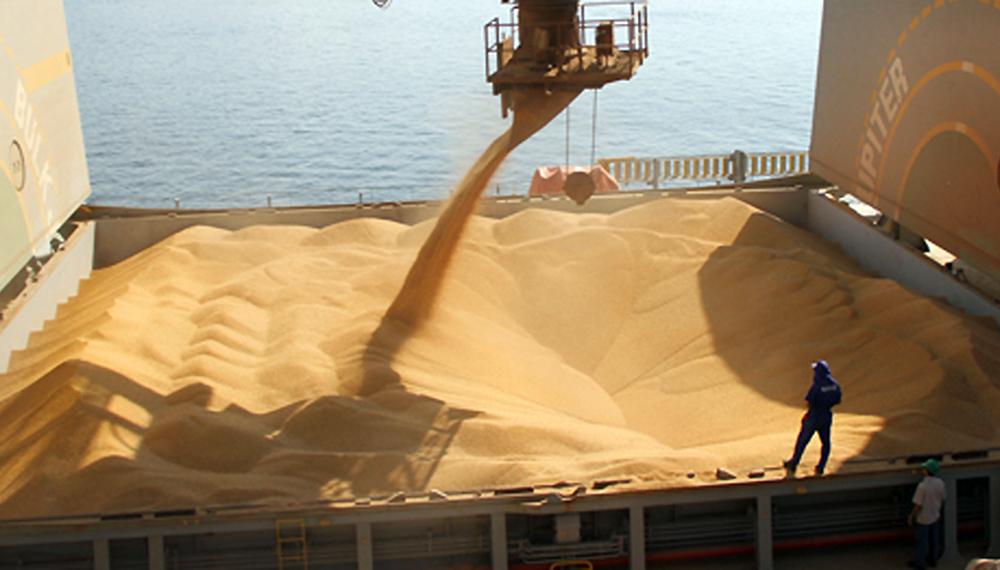 Exportaciones: Cinco empresas concentraron 65% de la venta de granos en el primer semestre