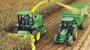 Agronegocios: En una década el rinde de maíz duplicó a la soja