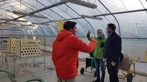 Chubut presentó en Nación el proyecto de desarrollo productivo de cannabis para uso medicinal