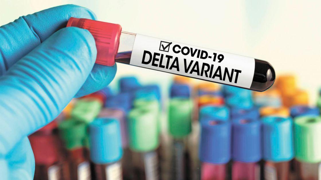 Confirman que las vacunas neutralizan la variante Delta, aunque de manera reducida