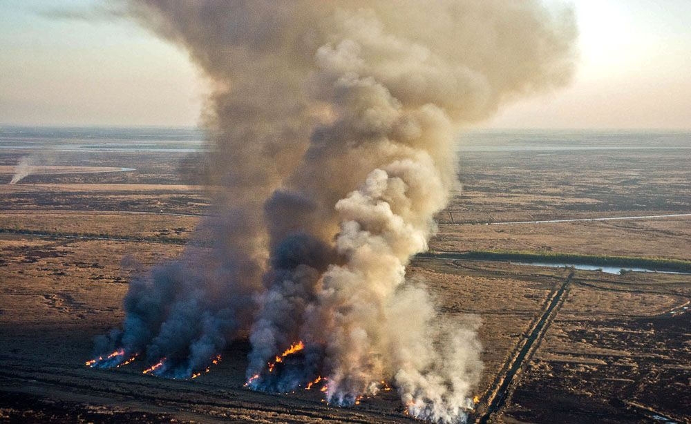 Medio Ambiente: La Ley de Humedales cajoneada y Cambandié 'despegado' del desastre en el Delta