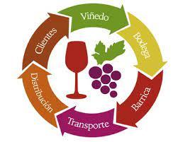 Bioeconomía: Provincia realizó una nueva jornada interzonal sobre vitivinicultura