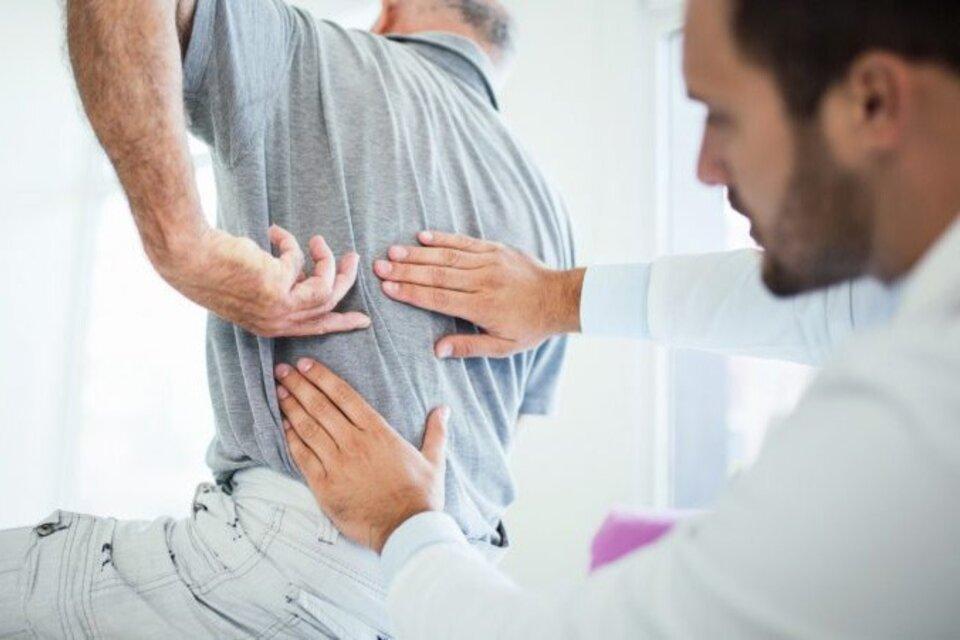 Ciencia y salud: Investigadoras del Conicet logran regenerar el nervio ciático tras una lesión