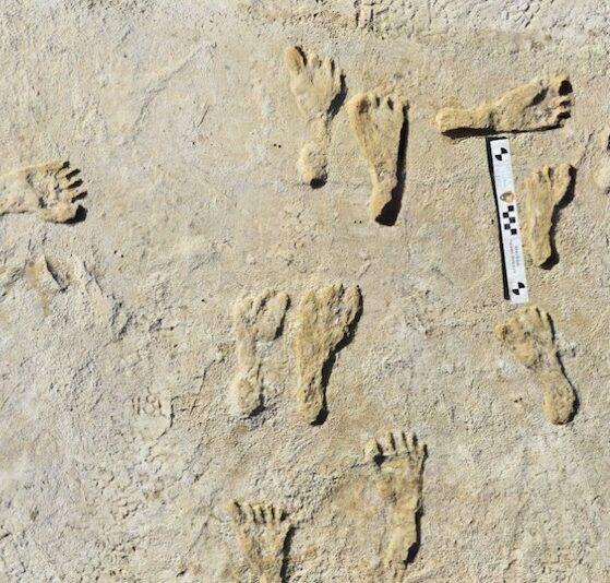 Las huellas que demuestran que hace 23 mil años ya había poblamiento en América